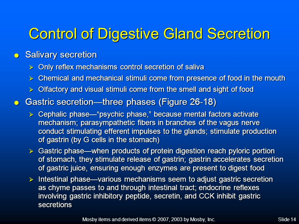 Mosby items and derived items © 2007, 2003 by Mosby, Inc.Slide 14 Control of Digestive Gland Secretion  Salivary secretion  Only reflex mechanisms control secretion of saliva  Chemical and mechanical stimuli come from presence of food in the mouth  Olfactory and visual stimuli come from the smell and sight of food  Gastric secretion—three phases (Figure 26-18)  Cephalic phase— psychic phase, because mental factors activate mechanism; parasympathetic fibers in branches of the vagus nerve conduct stimulating efferent impulses to the glands; stimulate production of gastrin (by G cells in the stomach)  Gastric phase—when products of protein digestion reach pyloric portion of stomach, they stimulate release of gastrin; gastrin accelerates secretion of gastric juice, ensuring enough enzymes are present to digest food  Intestinal phase—various mechanisms seem to adjust gastric secretion as chyme passes to and through intestinal tract; endocrine reflexes involving gastric inhibitory peptide, secretin, and CCK inhibit gastric secretions