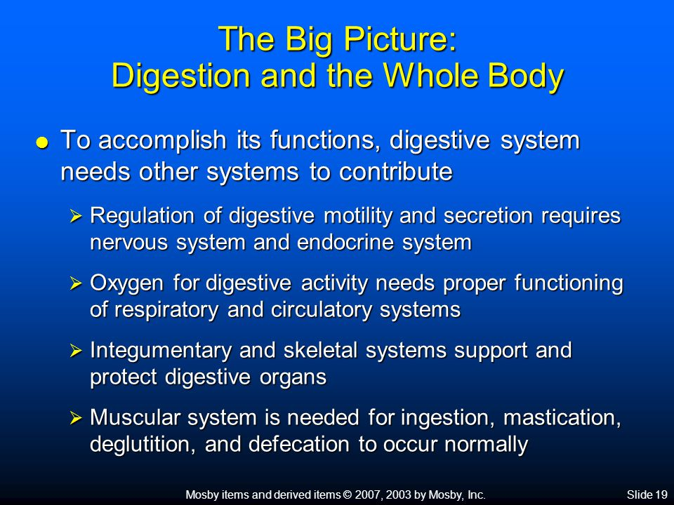 Mosby items and derived items © 2007, 2003 by Mosby, Inc.Slide 19 The Big Picture: Digestion and the Whole Body  To accomplish its functions, digestive system needs other systems to contribute  Regulation of digestive motility and secretion requires nervous system and endocrine system  Oxygen for digestive activity needs proper functioning of respiratory and circulatory systems  Integumentary and skeletal systems support and protect digestive organs  Muscular system is needed for ingestion, mastication, deglutition, and defecation to occur normally