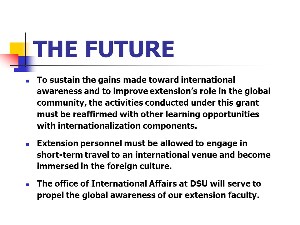 THE FUTURE To sustain the gains made toward international awareness and to improve extension's role in the global community, the activities conducted under this grant must be reaffirmed with other learning opportunities with internationalization components.