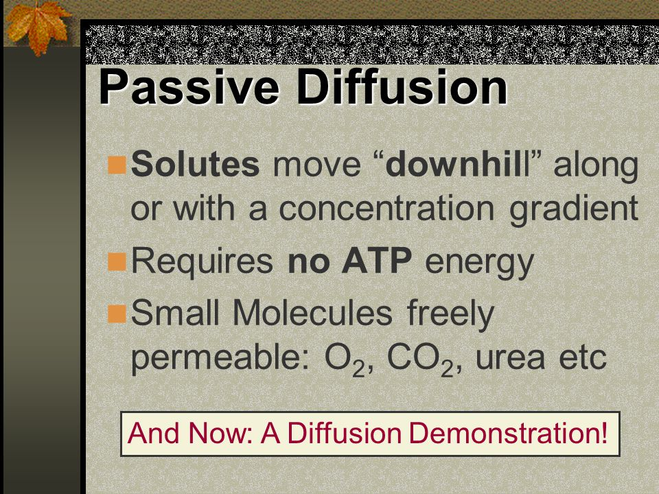 "Passive Diffusion Solutes move ""downhill"" along or with a concentration gradient Requires no ATP energy Small Molecules freely permeable: O 2, CO 2, u"
