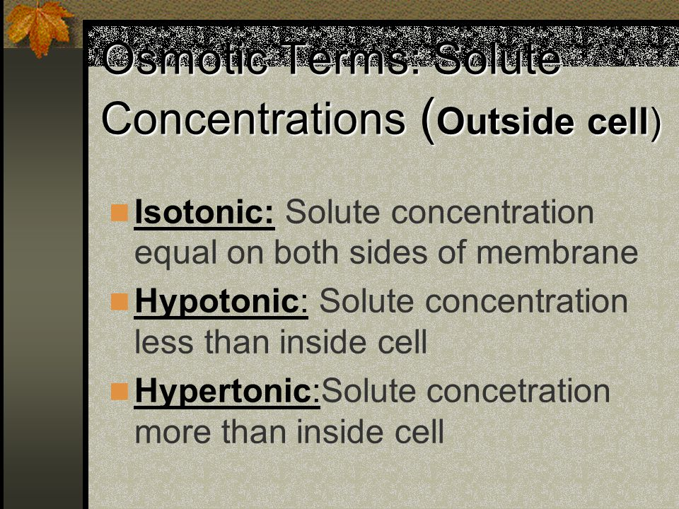 Osmotic Terms: Solute Concentrations ( Outside cell) Isotonic: Solute concentration equal on both sides of membrane Hypotonic: Solute concentration le