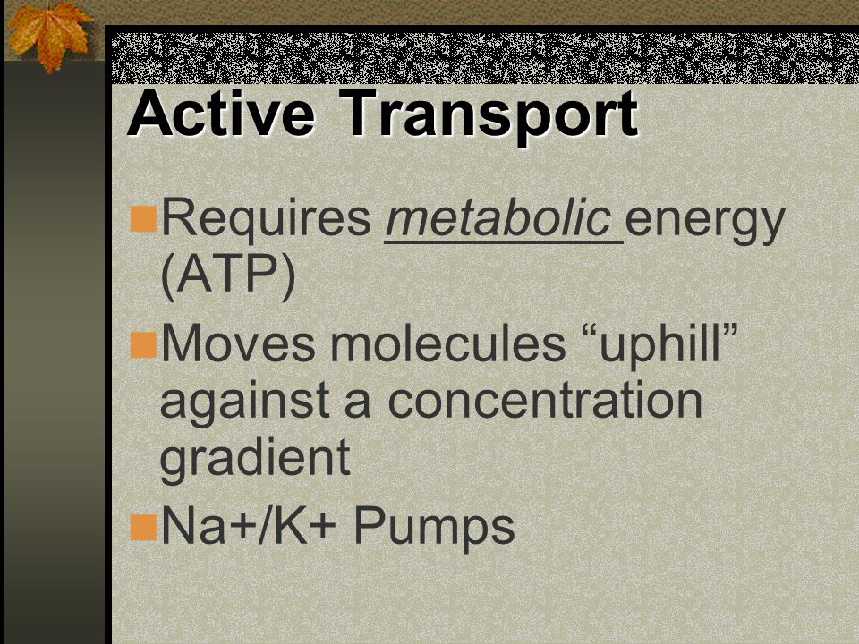 "Active Transport Requires metabolic energy (ATP) Moves molecules ""uphill"" against a concentration gradient Na+/K+ Pumps"