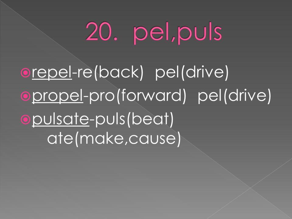  repel-re(back) pel(drive)  propel-pro(forward) pel(drive)  pulsate-puls(beat) ate(make,cause)