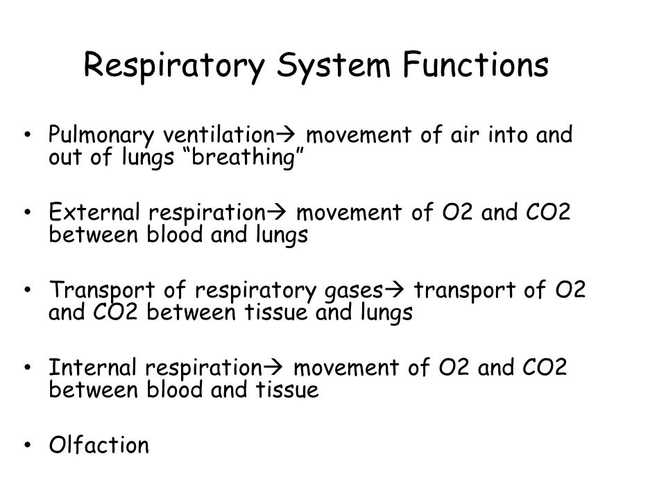 "Respiratory System Functions Pulmonary ventilation  movement of air into and out of lungs ""breathing"" External respiration  movement of O2 and CO2 b"