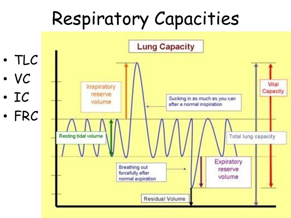 Respiratory Capacities TLC VC IC FRC