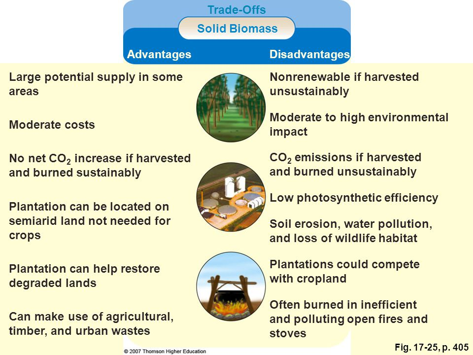 Fig. 17-25, p. 405 Trade-Offs Solid Biomass AdvantagesDisadvantages Large potential supply in some areas Nonrenewable if harvested unsustainably Moder