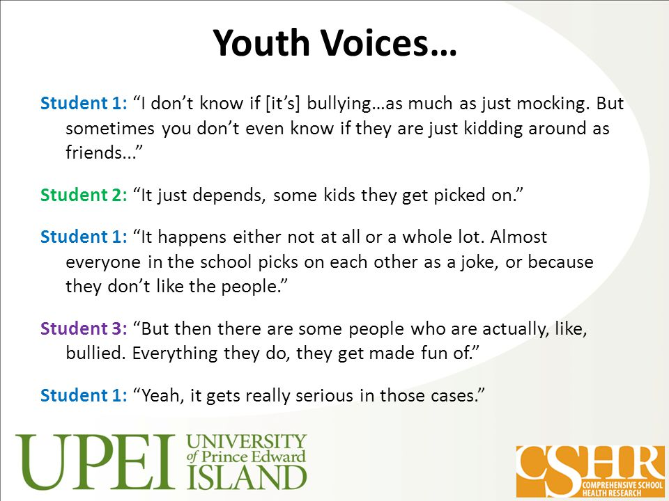 Youth Voices… Student 1: I don't know if [it's] bullying…as much as just mocking.