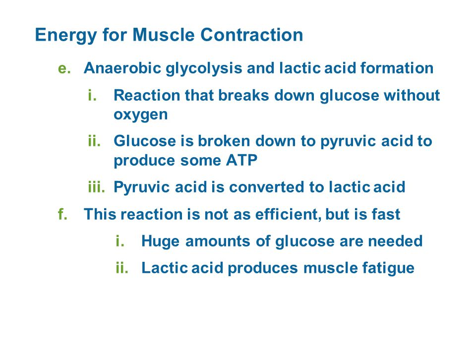Energy for Muscle Contraction e.Anaerobic glycolysis and lactic acid formation i.Reaction that breaks down glucose without oxygen ii.Glucose is broken