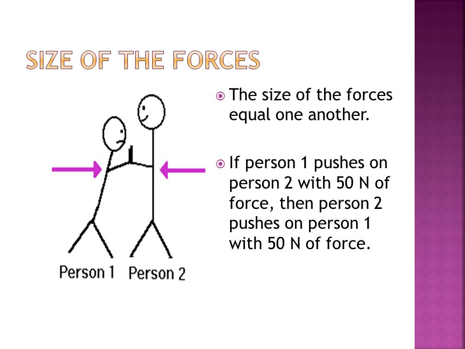  The size of the forces equal one another.