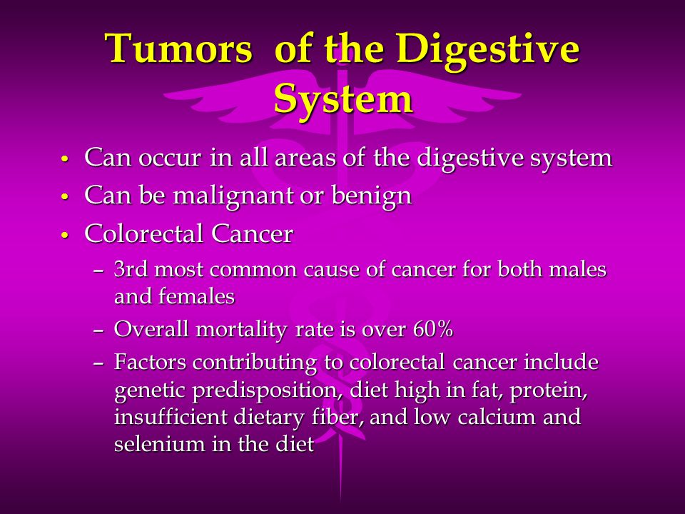 Tumors of the Digestive System Can occur in all areas of the digestive system Can occur in all areas of the digestive system Can be malignant or benig