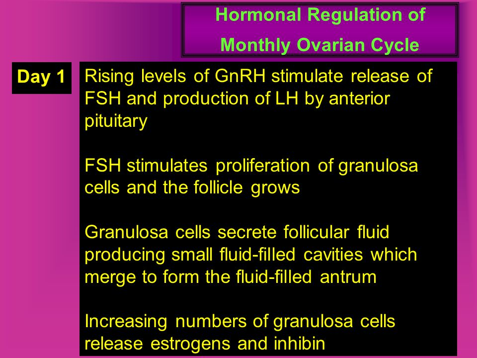 Hormonal Regulation of Monthly Ovarian Cycle Day 1 Rising levels of GnRH stimulate release of FSH and production of LH by anterior pituitary FSH stimu