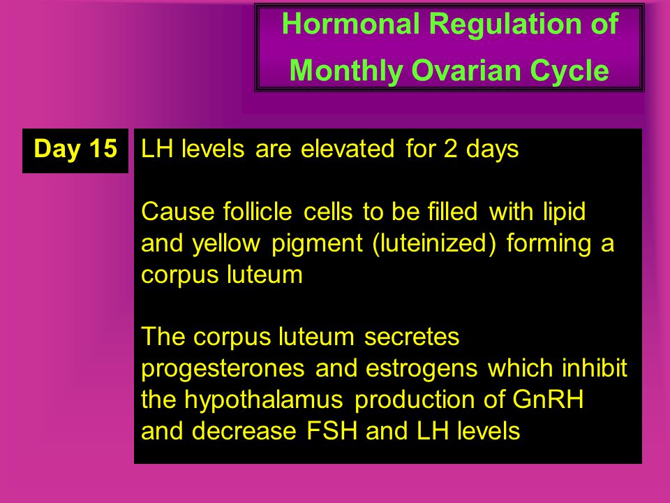 Hormonal Regulation of Monthly Ovarian Cycle Day 15LH levels are elevated for 2 days Cause follicle cells to be filled with lipid and yellow pigment (