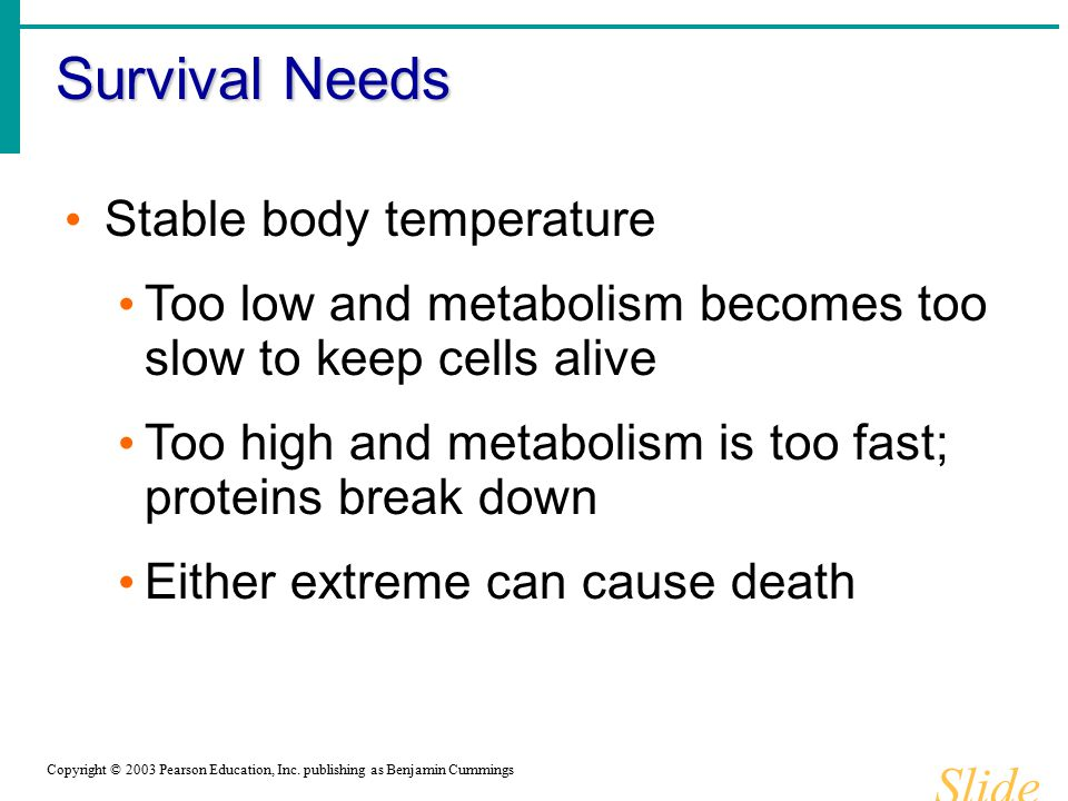 Survival Needs Slide 1.17b Copyright © 2003 Pearson Education, Inc. publishing as Benjamin Cummings Stable body temperature Too low and metabolism bec