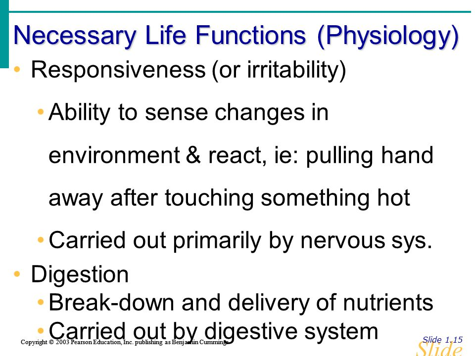 Slide 1.15 Copyright © 2003 Pearson Education, Inc. publishing as Benjamin Cummings Necessary Life Functions (Physiology) Slide 1.15 Copyright © 2003