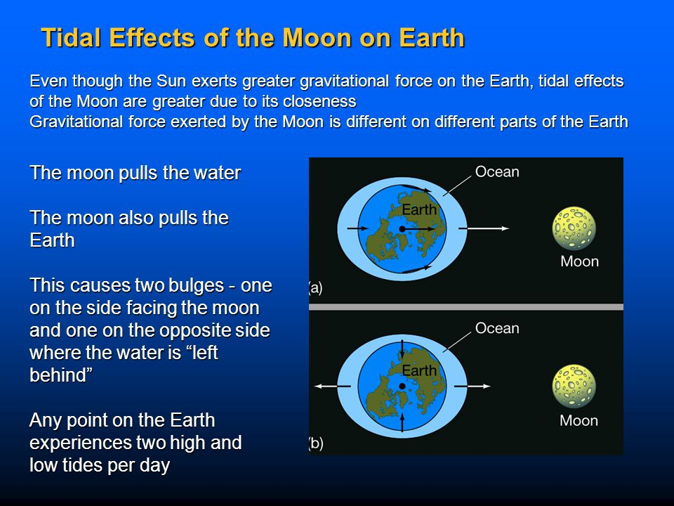 Tidal Effects of the Moon on Earth The moon pulls the water The moon also pulls the Earth This causes two bulges - one on the side facing the moon and
