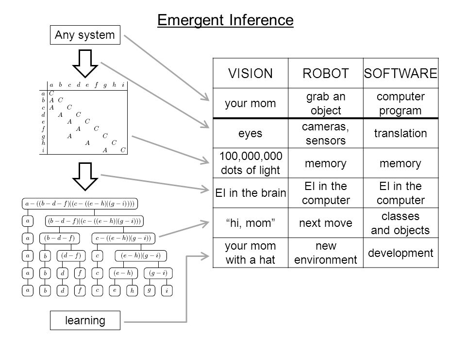 Emergent Inference Any system VISIONROBOTSOFTWARE your mom grab an object computer program eyes cameras, sensors translation 100,000,000 dots of light memory EI in the brain EI in the computer hi, mom next move classes and objects your mom with a hat new environment development learning