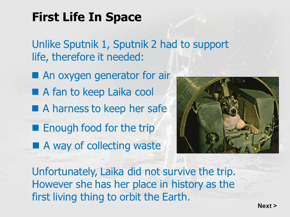 Next > Unlike Sputnik 1, Sputnik 2 had to support life, therefore it needed: Unfortunately, Laika did not survive the trip. However she has her place