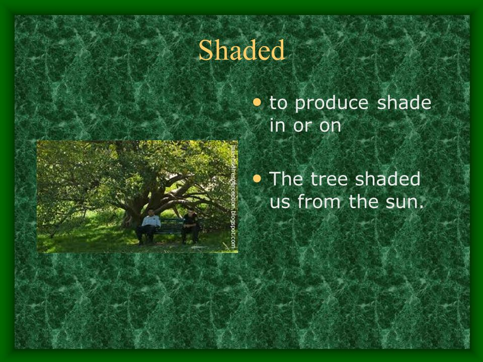 Shaded to produce shade in or on The tree shaded us from the sun.