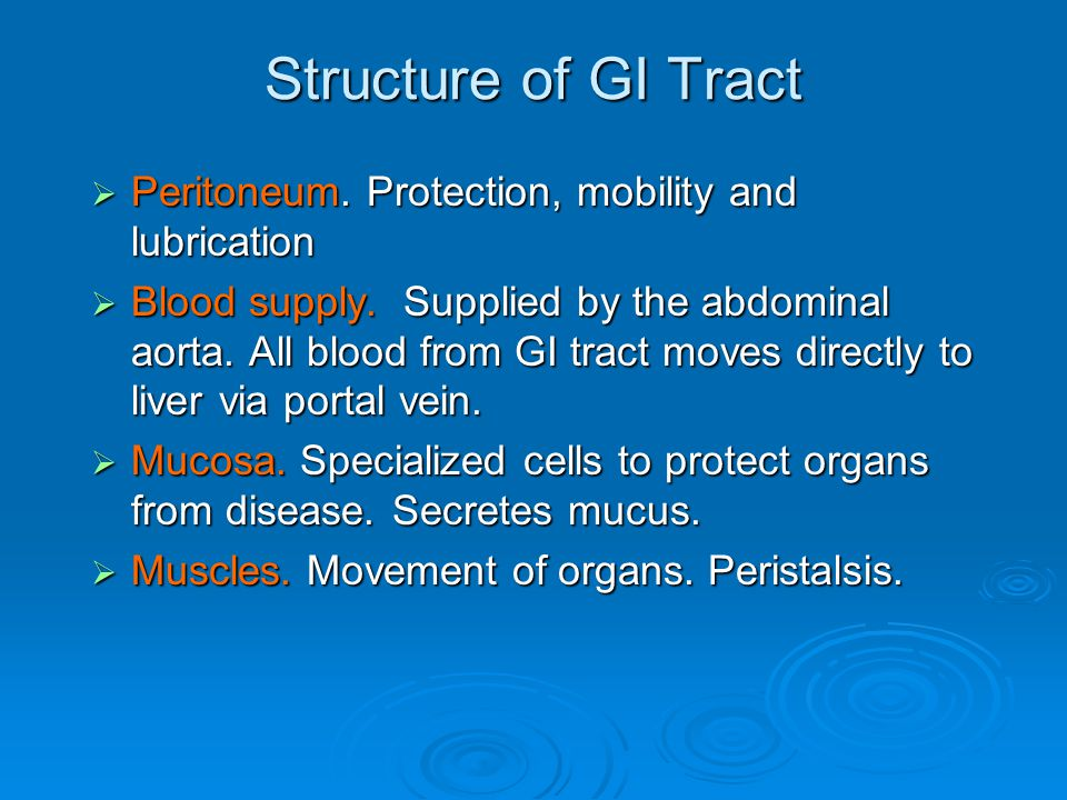 Structure of GI Tract  Peritoneum. Protection, mobility and lubrication  Blood supply.