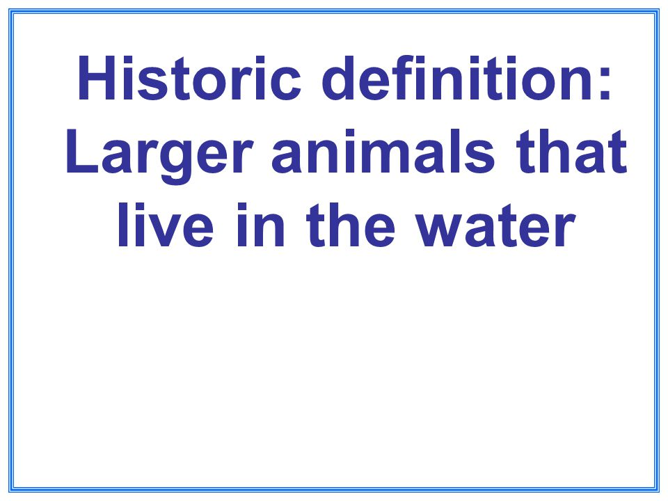 Historic definition: Larger animals that live in the water