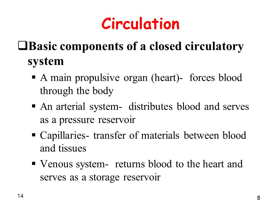 14 Circulation  Basic components of a closed circulatory system  A main propulsive organ (heart)- forces blood through the body  An arterial system- distributes blood and serves as a pressure reservoir  Capillaries- transfer of materials between blood and tissues  Venous system- returns blood to the heart and serves as a storage reservoir 8