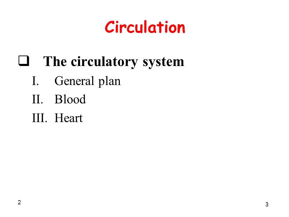 2 Circulation  The circulatory system I.General plan II.Blood III.Heart 3