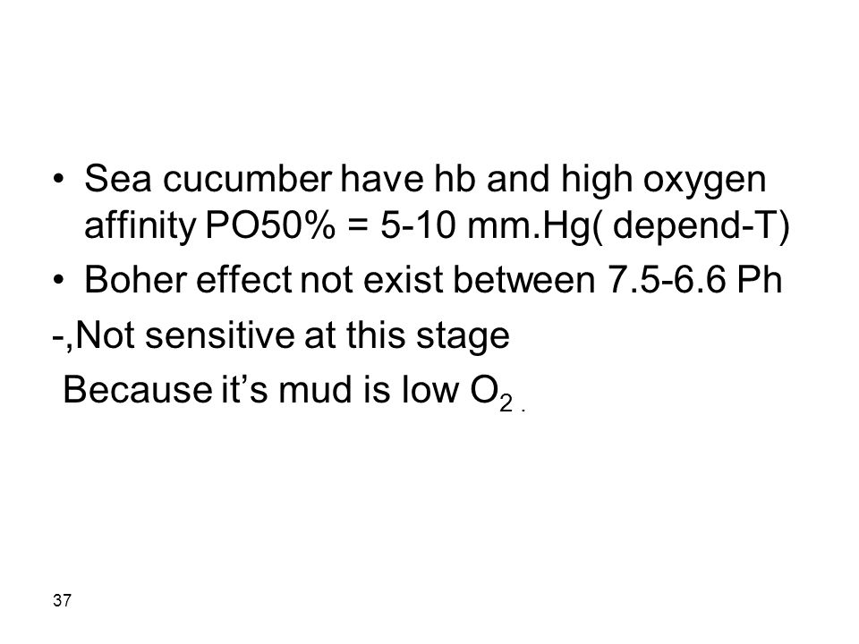 37 Sea cucumber have hb and high oxygen affinity PO50% = 5-10 mm.Hg( depend-T) Boher effect not exist between 7.5-6.6 Ph -,Not sensitive at this stage Because it's mud is low O 2.