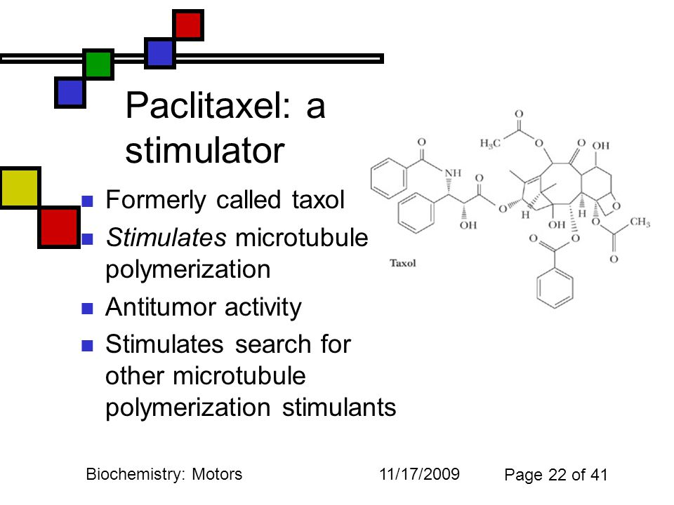 11/17/2009Biochemistry: Motors Page 22 of 41 Paclitaxel: a stimulator Formerly called taxol Stimulates microtubule polymerization Antitumor activity Stimulates search for other microtubule polymerization stimulants