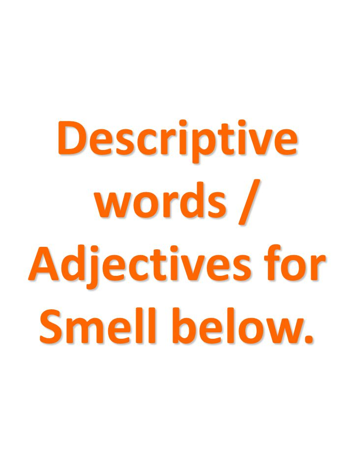 Descriptive words / Adjectives for Smell below.