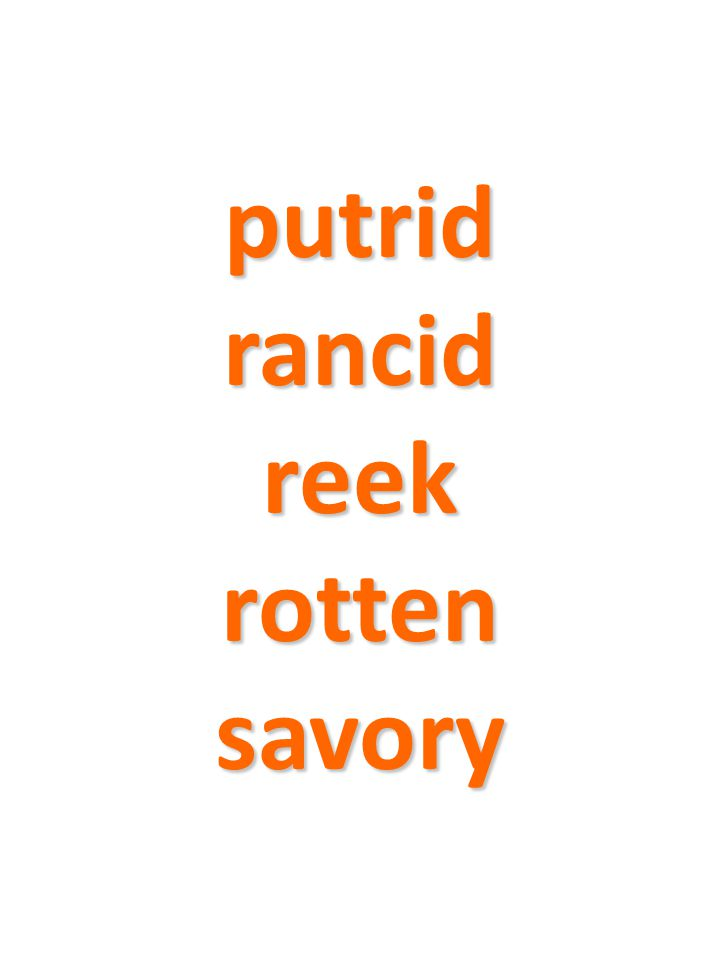 putrid rancid reek rotten savory