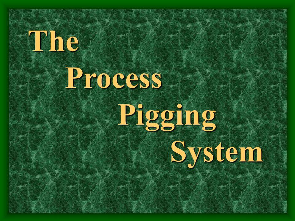 The Process Process Pigging Pigging System System
