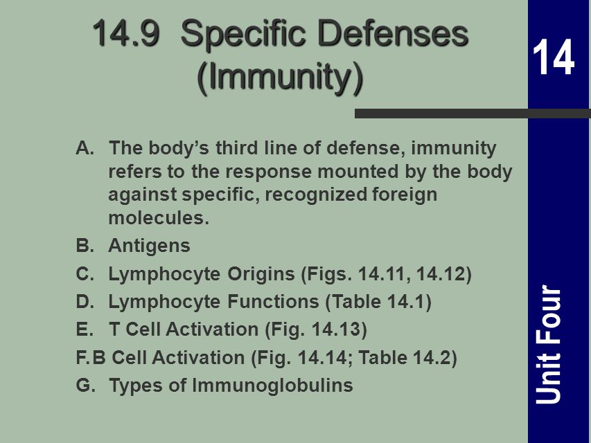 14 Unit Four 14.9 Specific Defenses (Immunity) A.The body's third line of defense, immunity refers to the response mounted by the body against specific, recognized foreign molecules.