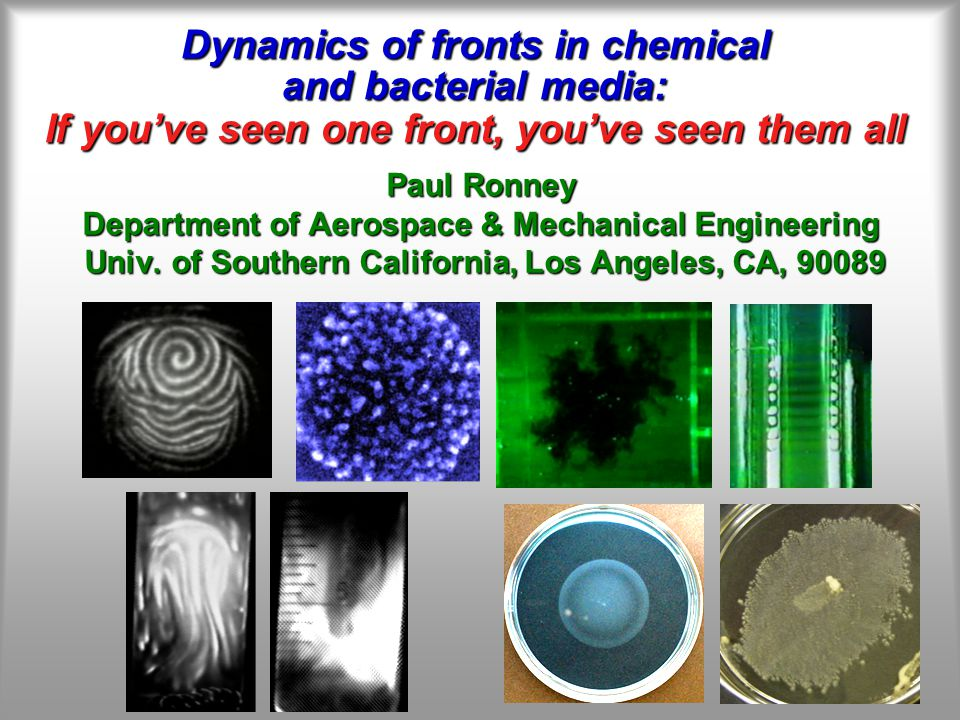 Dynamics of fronts in chemical and bacterial media: If you've seen one front, you've seen them all Paul Ronney Department of Aerospace & Mechanical Engineering Univ.