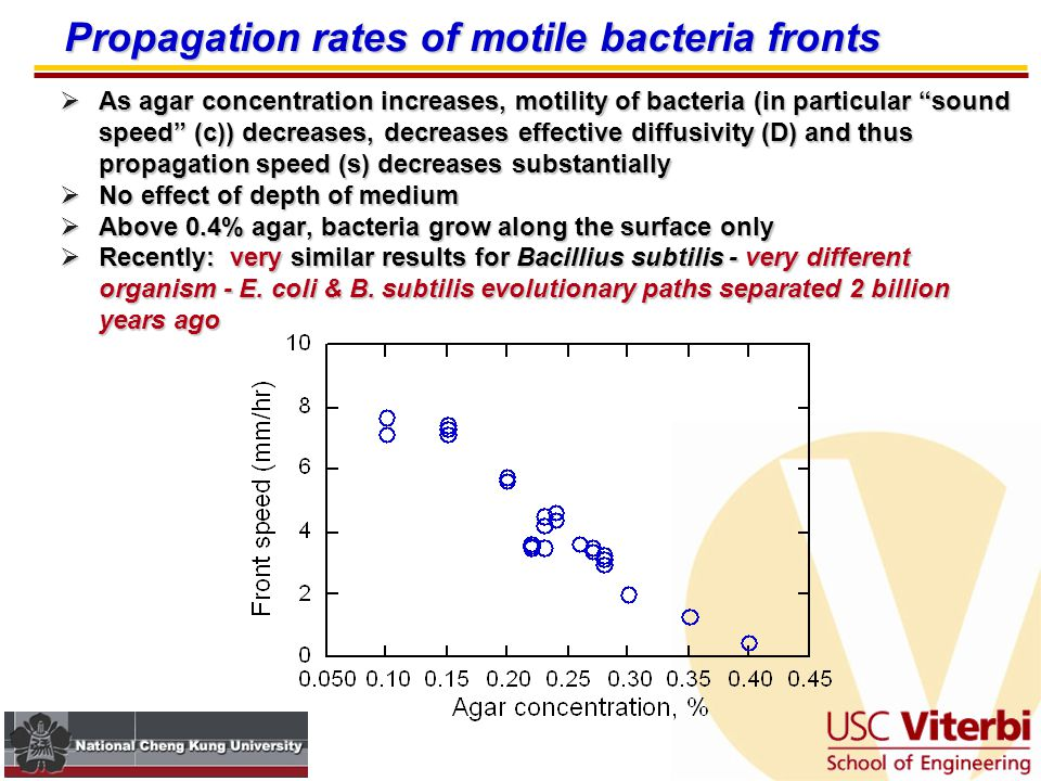 Fronts show a steady propagation rate after an initial transient Reaction-diffusion behavior of bacteria  Bacterial strains: E.coli K-12 strain W3110 derivatives, either motile or non-motile  Standard condition: LB agar plates (agar concentration of 0.1 - 0.4%)  Variable nutrient condition: Tryptone/NaCl plates (agar concentration of 0.1, 0.3%)  All experiments incubated at 37˚C