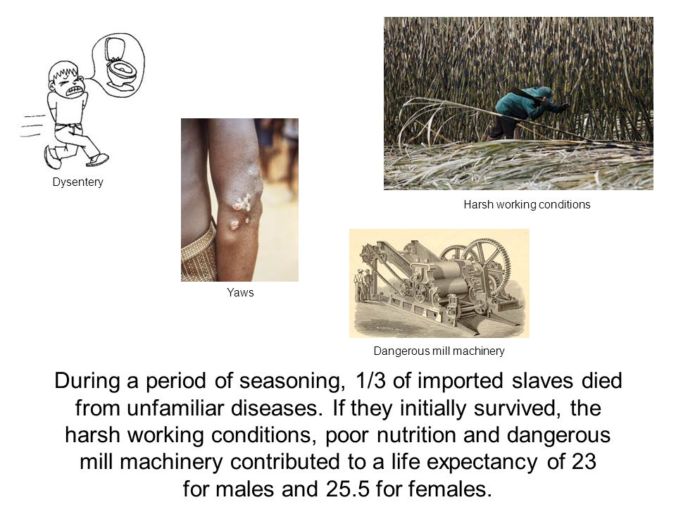 During a period of seasoning, 1/3 of imported slaves died from unfamiliar diseases. If they initially survived, the harsh working conditions, poor nut