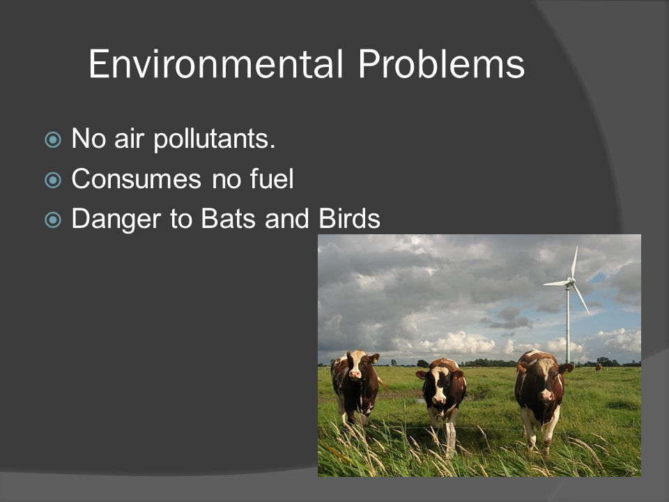 Environmental Problems  No air pollutants.  Consumes no fuel  Danger to Bats and Birds