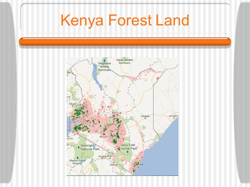 Kenya Forest Land