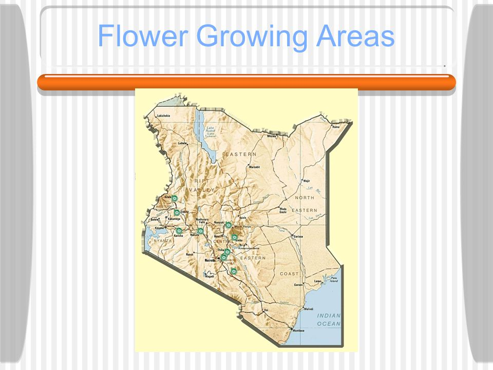 Flower Growing Areas