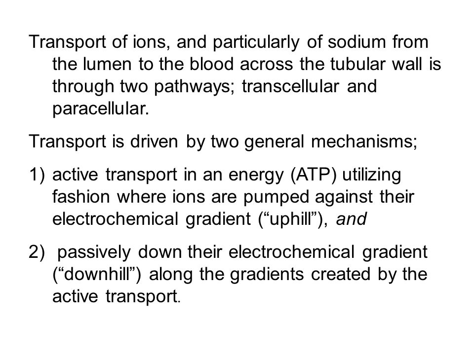 Transport of ions, and particularly of sodium from the lumen to the blood across the tubular wall is through two pathways; transcellular and paracellular.