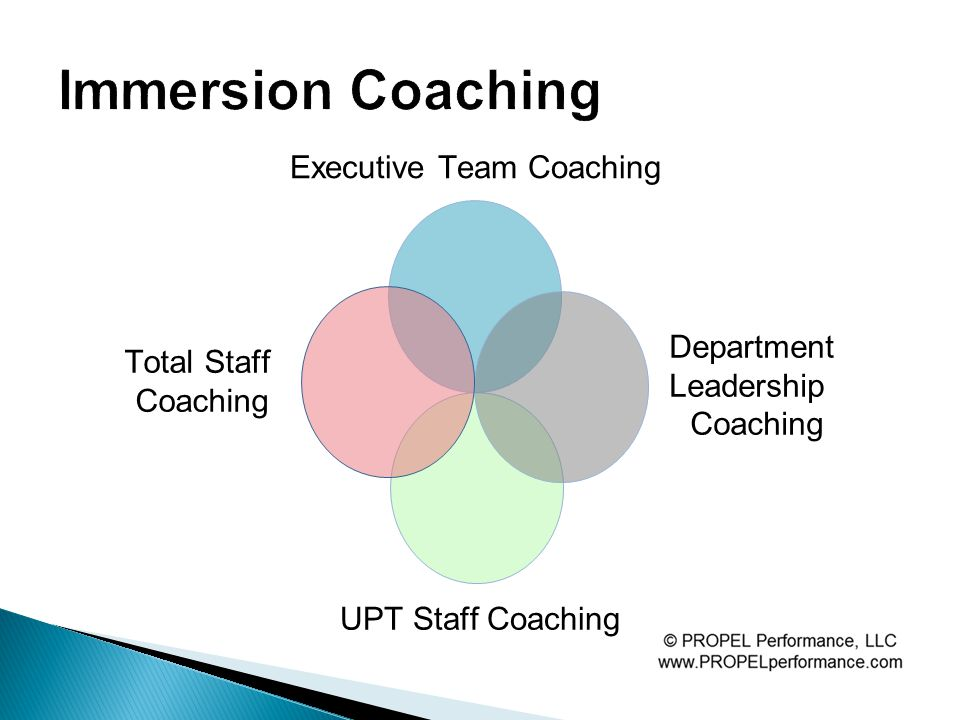 Executive Team Coaching Department Leadership Coaching UPT Staff Coaching Total Staff Coaching