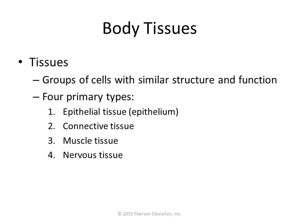 Figure 3.18f Types of epithelia and their common locations in the body.