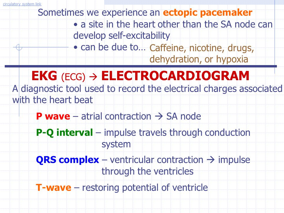 Sometimes we experience an ectopic pacemaker a site in the heart other than the SA node can develop self-excitability can be due to… Caffeine, nicotin