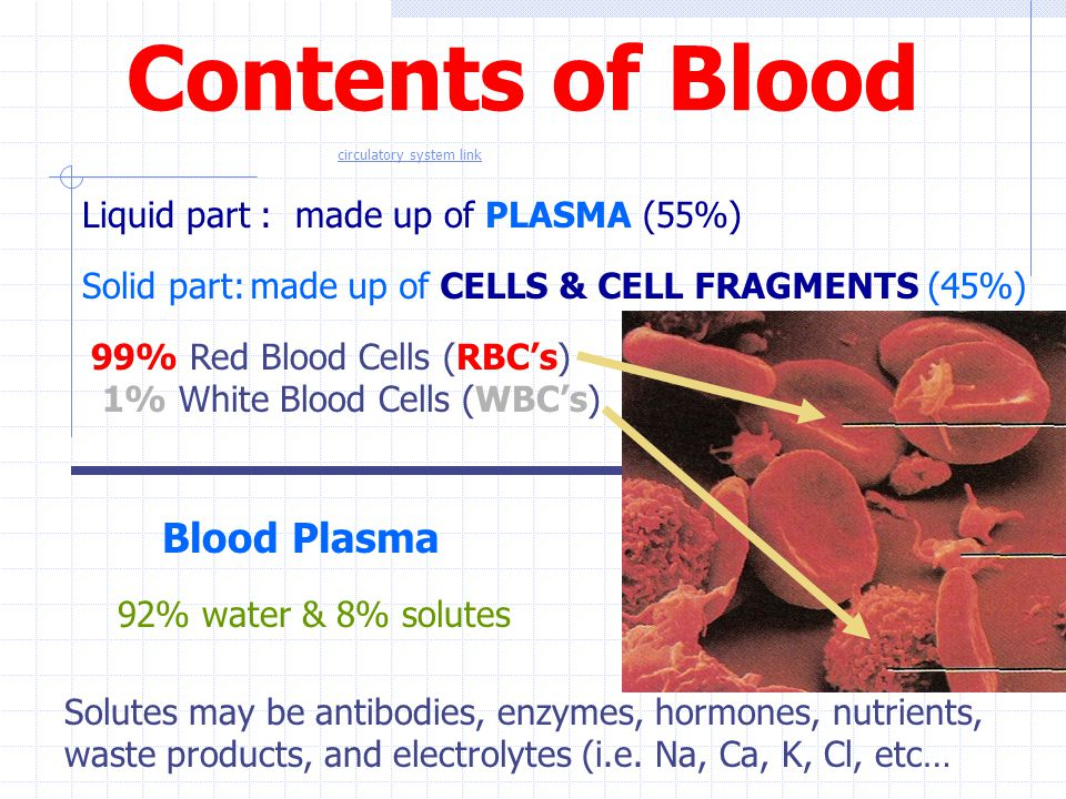 Contents of Blood Liquid part : Solid part: 99% Red Blood Cells (RBC's) 1% White Blood Cells (WBC's) Blood Plasma 92% water & 8% solutes Solutes may b