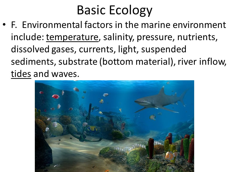 Basic Ecology F. Environmental factors in the marine environment include: temperature, salinity, pressure, nutrients, dissolved gases, currents, light