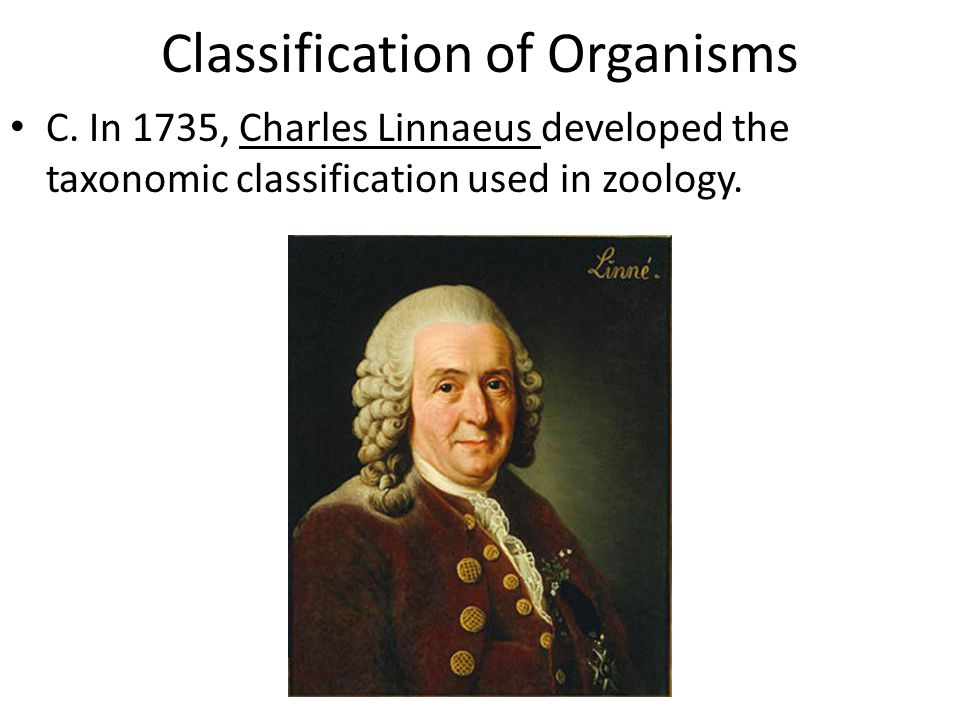 Classification of Organisms C. In 1735, Charles Linnaeus developed the taxonomic classification used in zoology.