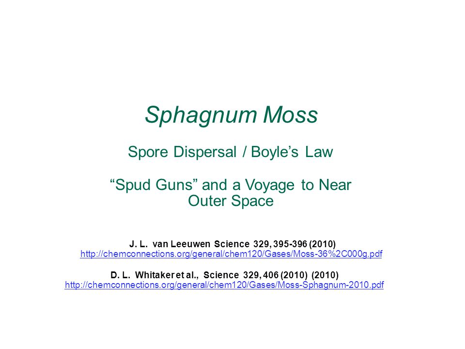 Sphagnum is a genus of up to 350 species of mosses commonly referred to as peat moss.