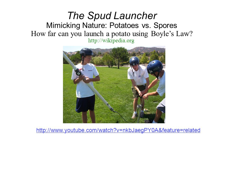 The Spud Launcher Mimicking Nature: Potatoes vs. Spores How far can you launch a potato using Boyle's Law? http://www.youtube.com/watch?v=nkbJaegPY0A&