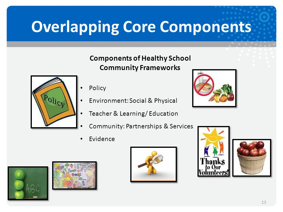 Overlapping Core Components 13 Components of Healthy School Community Frameworks Policy Environment: Social & Physical Teacher & Learning/ Education Community: Partnerships & Services Evidence