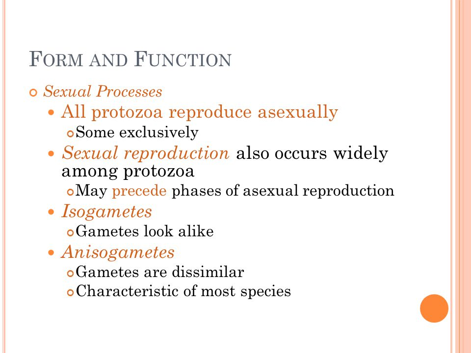 F ORM AND F UNCTION Sexual Processes All protozoa reproduce asexually Some exclusively Sexual reproduction also occurs widely among protozoa May prece