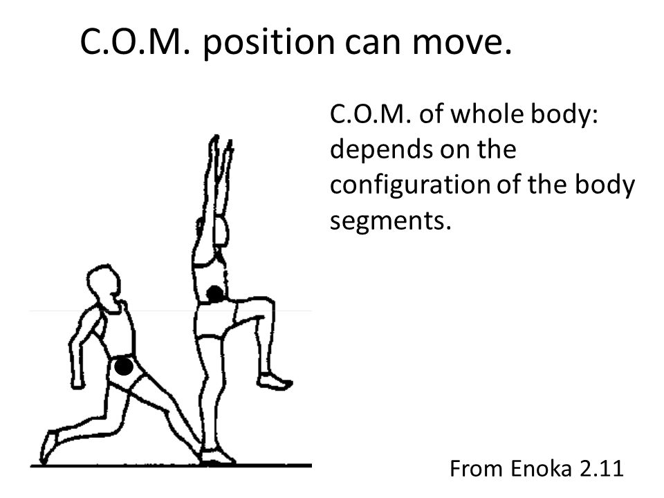 C.O.M. position can move. C.O.M. of whole body: depends on the configuration of the body segments. From Enoka 2.11